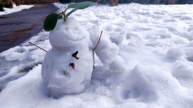 Poslední sněhová nadílka
